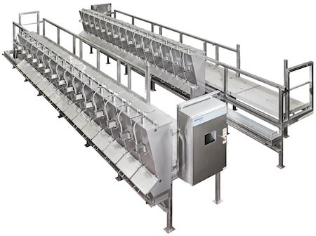 food manufacturing line
